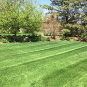 lawn care lakeville mn